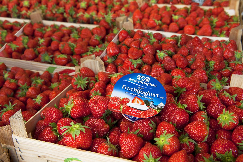 erdbeeren-quer-3neuklein